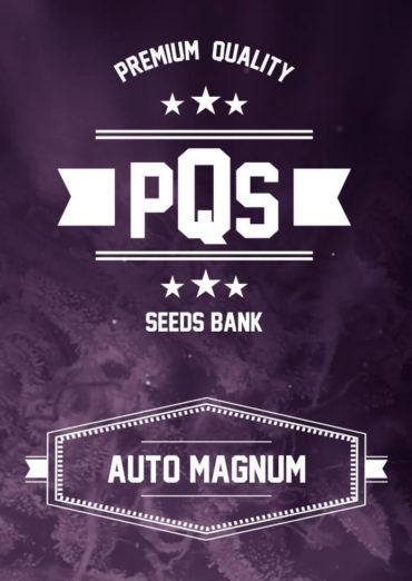 Auto Magnum
