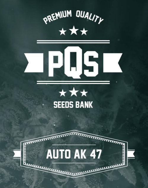 Auto AK47