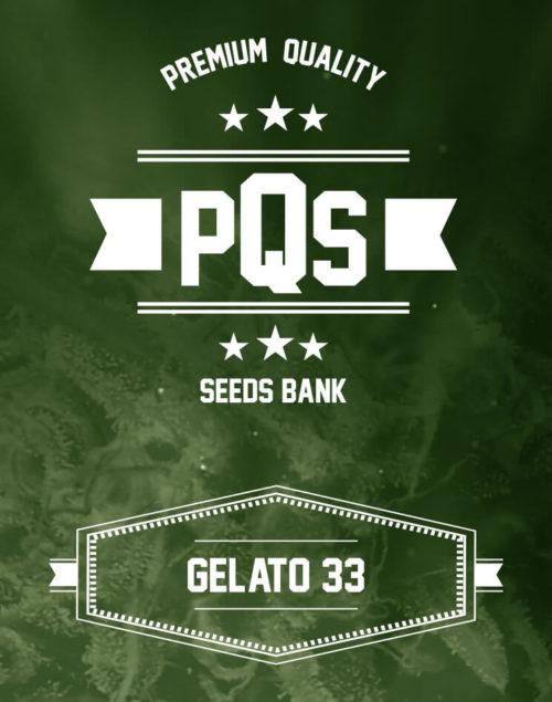 Gelato 33